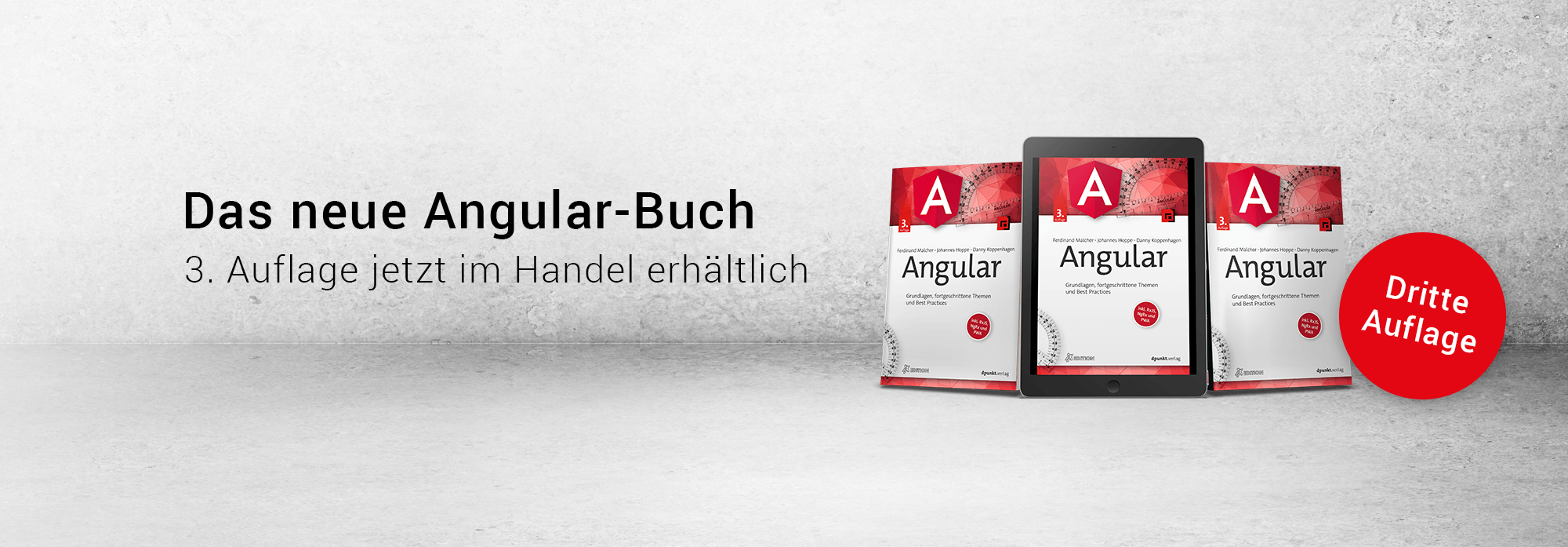 angular-buch-cover